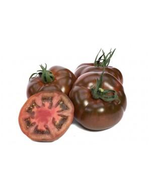 Pomidor BIG SACHER 250...