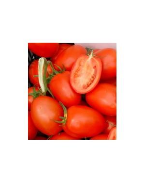 Pomidor COLIBRI 250 nasion...