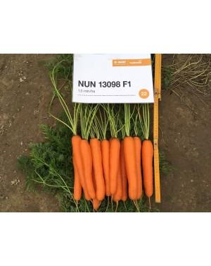 Marchew ALLYANCE 100.000 nasion PREC 1,6-1,8 ST