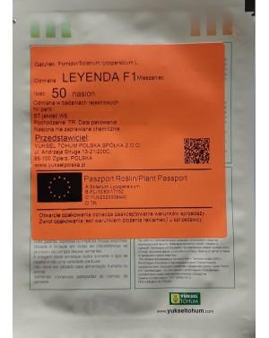 Leyenda, pomidor czekoladowy, bardzo wczesny, dobre odporności na choroby.