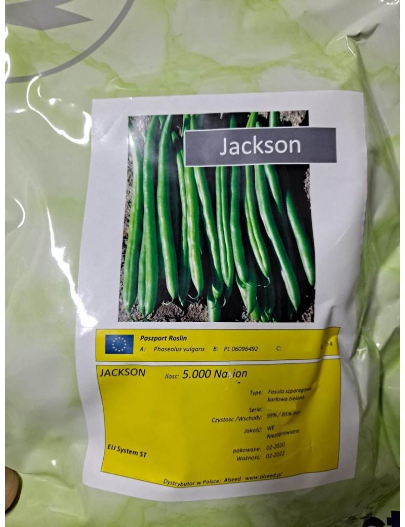 Fasola szparagowa Jackson 5.000 Nasion