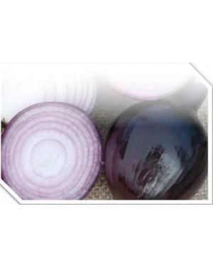 Cebula czerwona średnio-wczesna, na rynek świeży i do przechowania.