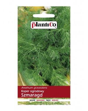 Koper Szmaragd to odmiana średnio późna, od siewu do zbioru na zielono mija około 45-50 dni.