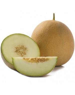 Melon GEDIZ 100 NASION