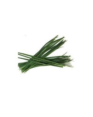 Szczypiorek Polystar 100 gr. nasion
