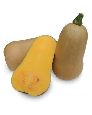 Dynia ORANGE NUT 50 nasion