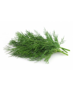 Koper LUKULLUS (PLANTICO) 500 gr. nasion ZW