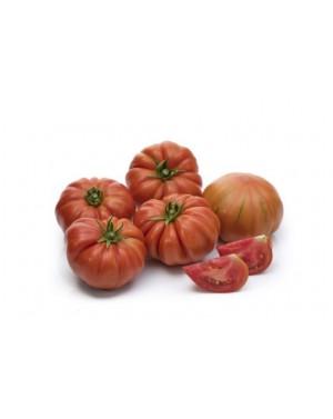 Pomidor BOCAMEGRA 100...