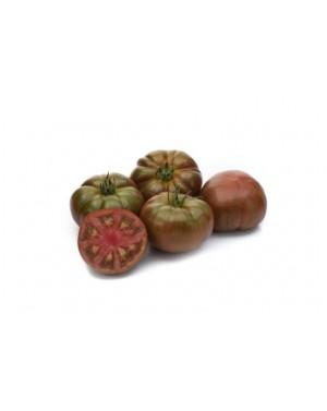 Pomidor BUCANERO 100 nasion...