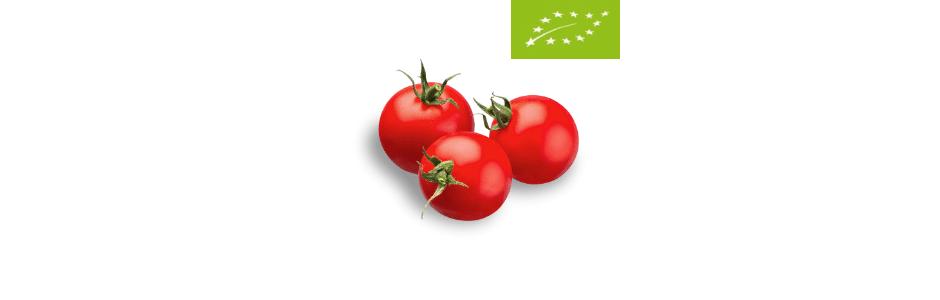 Pomidor EKO BIO